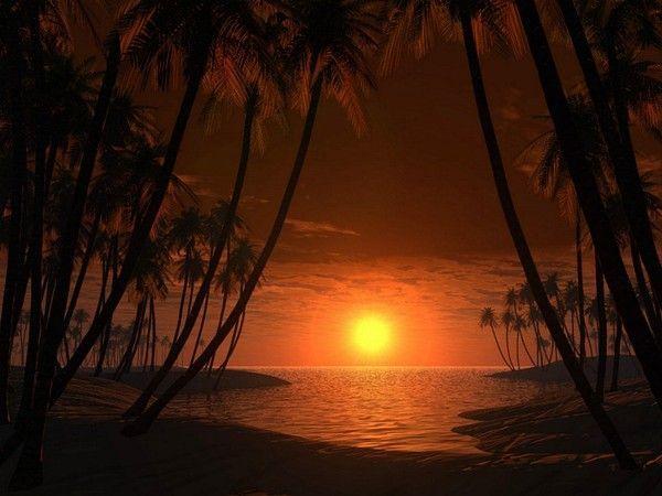 fond d'écran coucher de soleil - Page 4 04980b33