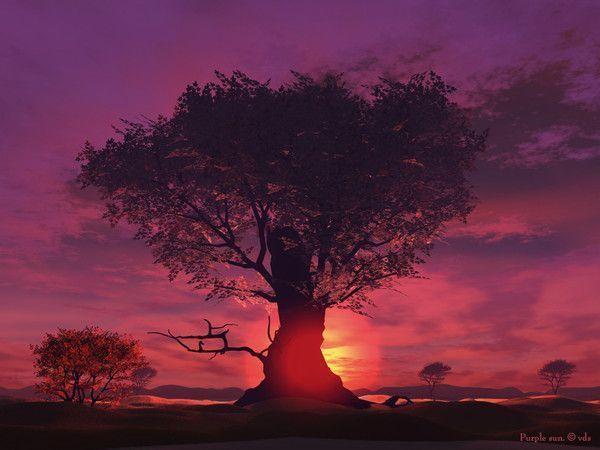 fond d'écran coucher de soleil 10b76404