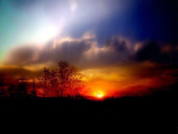 fond d'écran coucher de soleil - Page 2 25c565fb