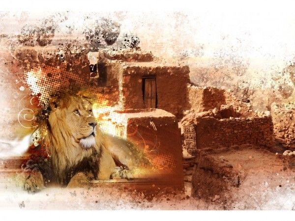 fond d'écran lion - Page 2 26ae01d6