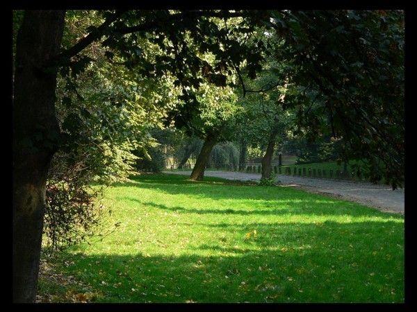 Fond d ecran parc et jardin for Parc et jardin