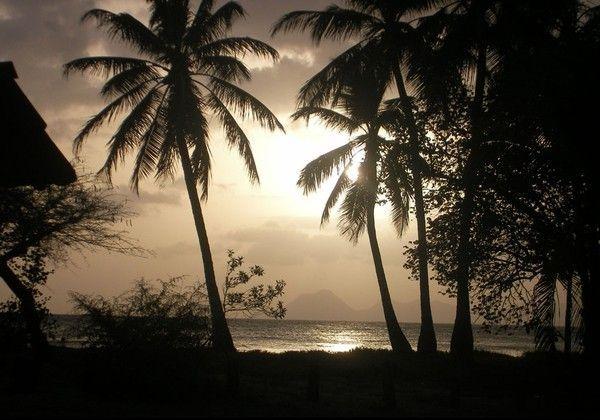 fond d'écran coucher de soleil - Page 3 33b259cb