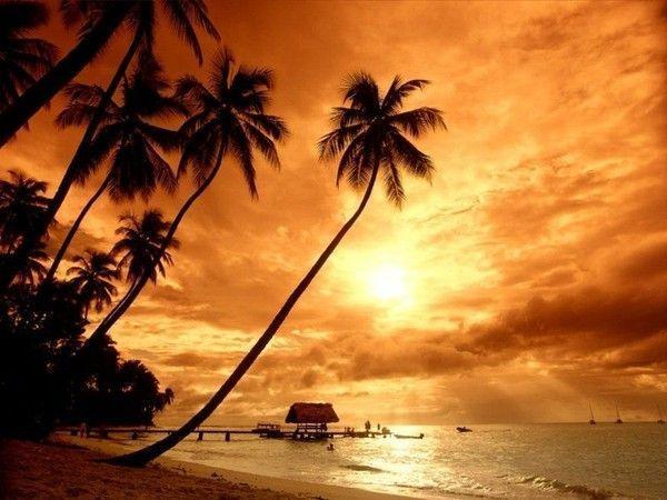 fond d'écran coucher de soleil - Page 2 34164627
