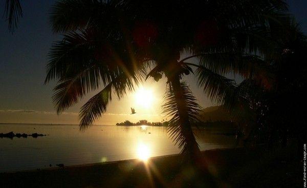 fond d'écran coucher de soleil - Page 2 585a4f26