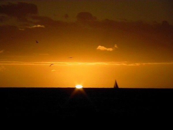 fond d'écran coucher de soleil - Page 2 63e9d7c7