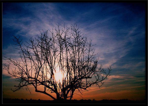 fond d'écran coucher de soleil - Page 2 78635637