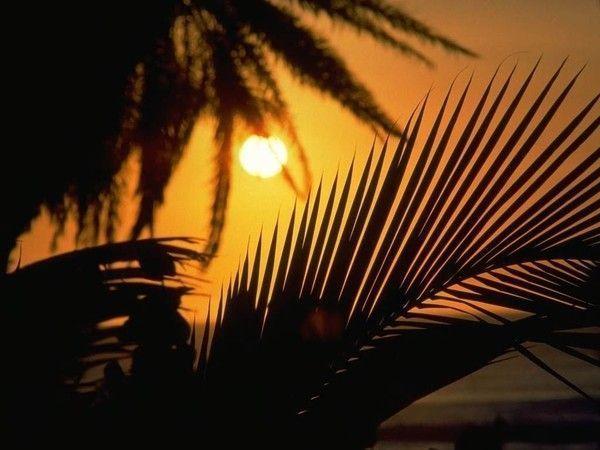 fond d'écran coucher de soleil 7ec38757
