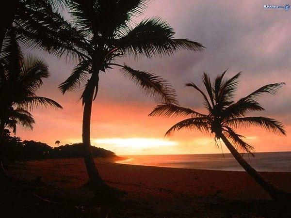 fond d'écran coucher de soleil - Page 2 8ba17041