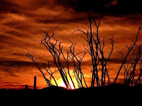 fond d'écran coucher de soleil 9bf821c1