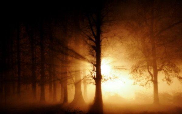 fond d'écran coucher de soleil - Page 4 F93f522b